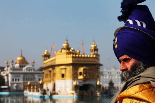 the-sentinel-a-nihang-sikh-watches-over-the-sacred-golden-temple-amritsar-3